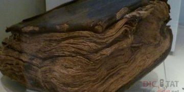 Библия, которой 1500 лет, утверждает, что иисуса не распяли[
