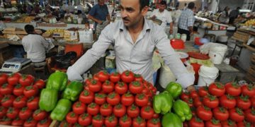 На днях был на рынке. Подошел к палатке, где торговал грузин. Овощи свежие, очередь стоит довольно большая. Черед доходит до…