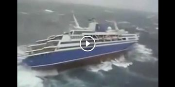 Море волнуется… А на круизном лайнере происходят ужасающие события!