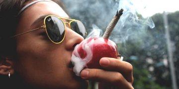 """Ученые из США официально заявили: """"трава"""" превосходно убивает раковые клетки"""