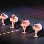 Как выглядит «Лебединое озеро» в Японии