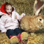 Самая маленькая девушка в мире!