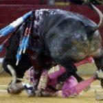 Бык убил испанского матадора во время корриды. Жуткое зрелище