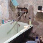 Сын приехал в гости к Маме. Вот что он сделал с её ванной комнатой…
