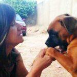 Хозяйка собаки умирала от рака, пес не отходил от нее ни на минуту, а потом пришел на ее похорон…До слез!