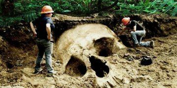 10 самых удивительных открытий, сделанных в джунглях