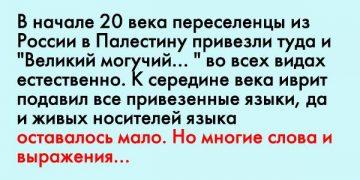 Фраза профессора, после которой русские лежали под столом…