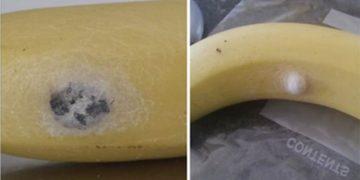 Такой банан может стать последним в вашей жизни. И вот почему