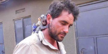 Мужчина спас обезьянку от дикого африканского огня. Вы только посмотрите на ее благодарность!