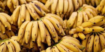 Если Вы любите бананы, то прочтите эти 10 шокирующих фактов!!!