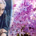 Прекрасная музыка Поля Мориа, посвящённая всем МАМАМ на свете
