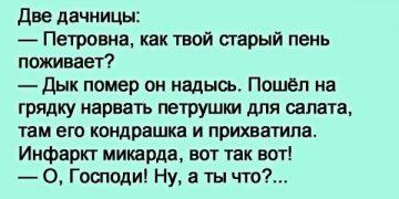 Две дачницы: — Петровна, как твой старый пень поживает?