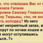 Про великую силу живого русского языка и многолетний педагогический стаж. Будет интересно!