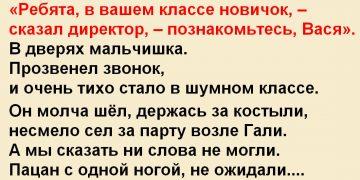 Ребята, в вашем классе новичок, – cказал директор, – познакомьтесь, Вася.