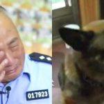 Врачи сказали усыпить собаку, но он не смог предать друга.