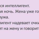 Женился интеллигент