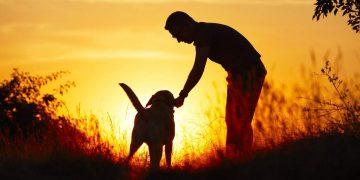 Парень шел по парку, он немного хромал на обе ноги, рядом шел старый пес