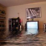 «Непорядочные соседи, или как меня пытались в затоплении дома обвинить»