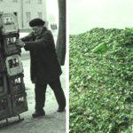 Зачем Япония массово покупала у СССР битое стекло