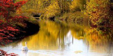 Осень… Так красиво! Замечательная музыка и клип