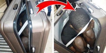 8 странных вещей, найденных при обыске в аэропорту