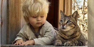 Никто не знает вашего ребенка лучше вас.